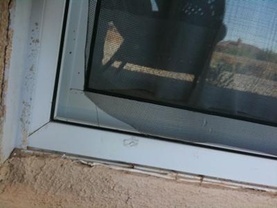 Torn screen at corner of sliding screen door