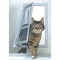 Window Pet Door 001