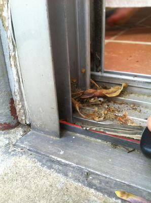 Bottom of door frame - I measured down to the top of the